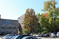 Limestone campus school blds. through fall yellow trees