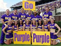 more than a dozen purple clad male and female cheerleaders pose