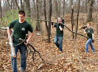 HC students are brushing out a wooded area as community service.