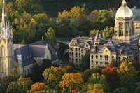 This is an aerial view of a few buildings including the golden dome with fall colored trees.